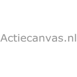Actiecanvas.nl reviews, beoordelingen en ervaringen
